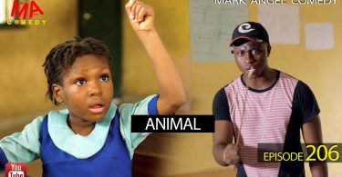 ANIMAL - Mark Angel Comedy [Episode 206]