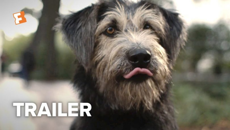 lady and the tramp trailer offic