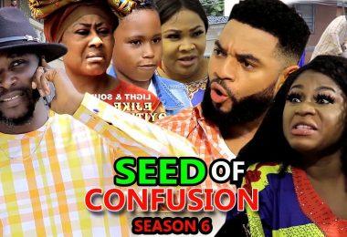 seed of confusion season 6 nolly