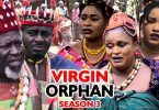 the virgin orphan season 3 nolly