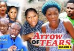 arrow of tears season 1 nollywoo
