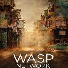 Wasp Network 2019