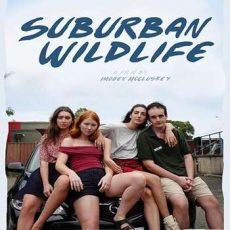 Suburban Wildlife 2019