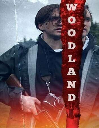 Woodland 2020