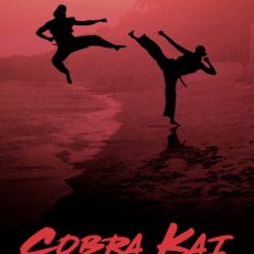 Cobra Kai 2020 S01
