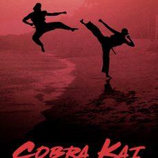 Cobra Kai S01 subtitles