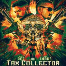 The Tax Collector 2020 subtitles
