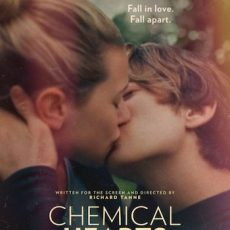 chemical hearts 2020 subtitles