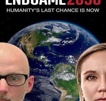 Endgame 2050 2020