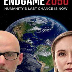 Endgame 2050 2020 subtitles