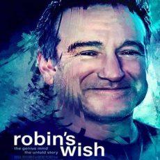 Robins Wish 2020 Subtitles