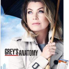 Greys Anatomy Season 17 Subtitles