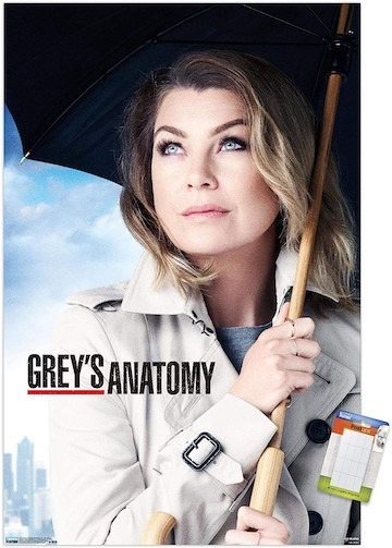 Greys Anatomy Season 17 Subtitles