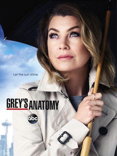 Greys Anatomy Season 17