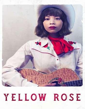 Yellow Rose 2020