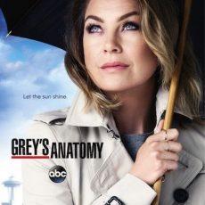 Greys Anatomy S17 E08