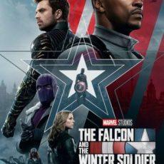 The Falcon and the Winter Soldier S01E01 Hindi
